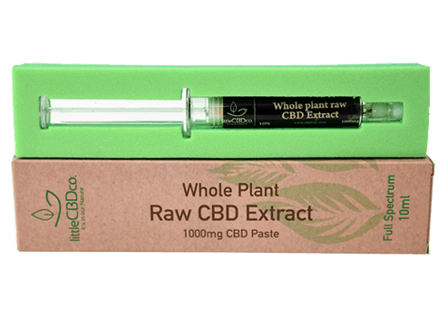 CBD Raw Hemp Paste
